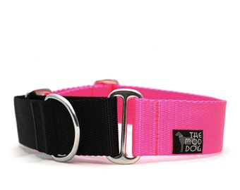 "1.5"" Dog Collar The Cullen martingale or buckle collar"