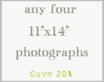 11x14 - Print Set - Any Four Photography Prints