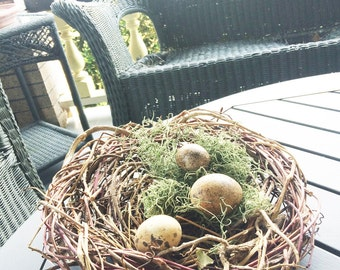 Wild Vine Basket Nest, Garden Pod, Nature Inspired Decor, Baby Shower Decoration, Home Decor Basket, Red Brown RB