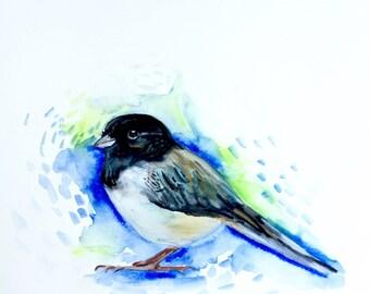 "Bird in Watercolor, Painting, Original Art, 9""x12"""