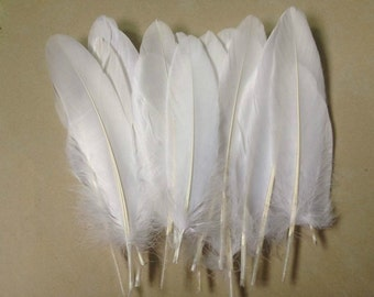 Goose feather - natural 6 to 8 inches or 15 to 20 long - large - snow white feathers - regalia millinery hair accessory - coyoterainbow yy91