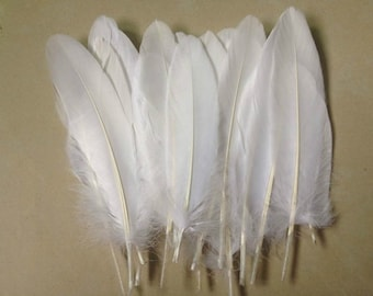 Goose feather - natural 6 to 8 inches or 15 to 20 cm long - med large snow white feathers - regalia millinery hair accessory - yy91