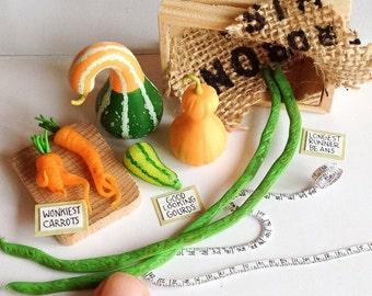 Oh My Gourd, prize Winning Veg Scene