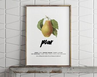 Printable Wall Art - Vintage Pear - Digital Print - PDF Poster - Pear Poster - Digital Download Print - Printable Kitchen Poster - 8x10 PDF