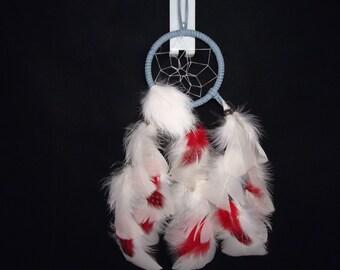Blue Dream Catcher  Native American Made