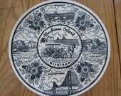 Vintage Souvenir Plate for Mackinac Island Michigan 10.5 in Decorative Plate Wall Decor Collectible Made in USA Ironstone