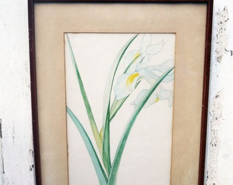 Set of 3 vintage framed botanical flower art prints