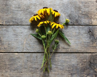 Black Eyed Susan, organic heirloom flower seeds, from our farm, eco friendly gardener gift, organic gardening, wildflower garden, green gift