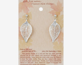 Real Evergreen Leaf Dipped In Silver Post Dangle Earrings - Real Dipped Leaves - On Card