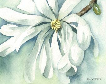 Spring Time Blossom Magnolia - Original Watercolor Painting