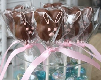 Chocolate Covered Easter Bunny Marshmallow Pop + FREE SHIPPING {set of 10 pops}