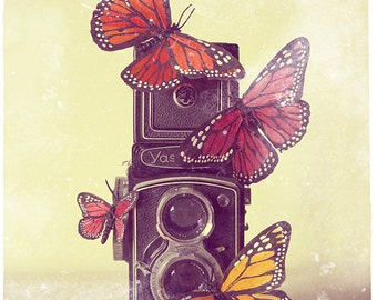Camera Photo, Fine Art Photograph, Photo, Photography, Butterflies, Butterfly, Retro, Shutter, Gift for photographer, yellow, pink, photo