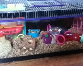 Aquarium Cage Tank Top - Top Door 10 Gal, 15 Gal, 20 Gal gerbil rat hamster degu Reptile Snake Turtle
