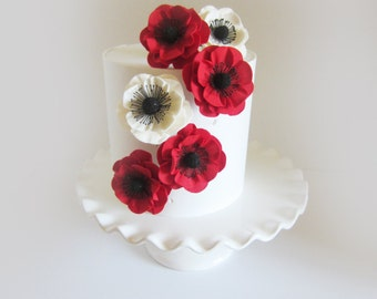 sugar anemone medium red and white  set of 6