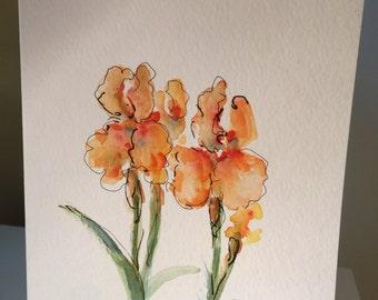 Peach Iris Hand Painted Watercolor Card