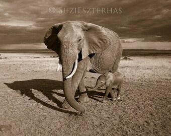 BABY ELEPHANT and MOM Photo, Sepia Photograph, Safari Nursery Art Print, Baby Animal Photography, African Wildlife, Kids Room, Baby Shower