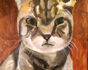 Custom 11x14 Cat Portrait