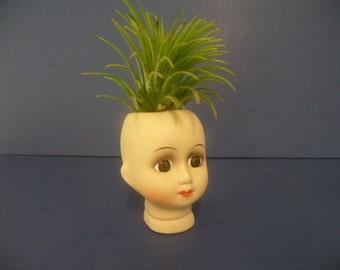 Creepy little porcelain doll head planter with air plant.