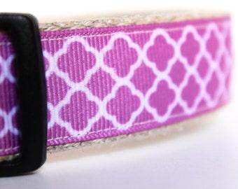 ON SALE - Lavender Dog Collar, Orchid Dog Collar, Adjustable Dog Collar, Girl Dog Collar, Summer Spring Collar