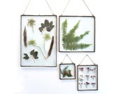 Clear glass frame, 8.5 X 11 frame, rustic frame, picture frame, pressed flowers, pressed leaves, zinc frame, zinc house, zinc decor,