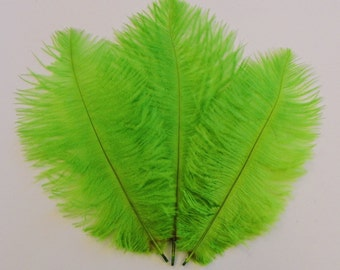 Neon Green Ostrich Feathers