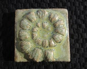 Ceramic Relief Ammonite shell/fossil TILE - any one color