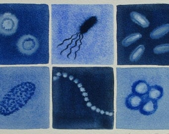 Deep Blue Bacteria  - original watercolor painting of microbes