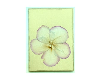 Rose petal Collage Card - Blank 5x7 (RP57-001)