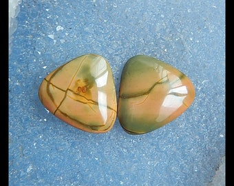 Multi-Color Picasso Jasper Cabochon Pair,22x19x4mmm,5.62g