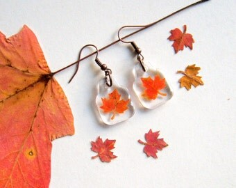 Real Autumn Maple Leaf Woodland Earrings - botanic jewelry, pressed leaves, leaf earrings, small earrings, maple leaf, Canada, Autumn, ooak