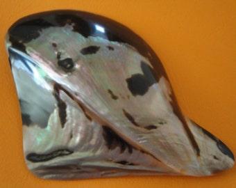 "Sea Shell Seashells 4.9"" Polished Wing Oyster Shell"