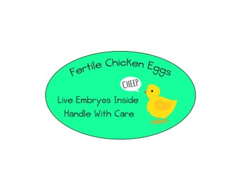 Fertile Chicken Eggs Glossy Egg Carton or Shipping Labels Set of 30