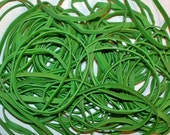 120 plus Custom Rubber Bands, 3 elasticities