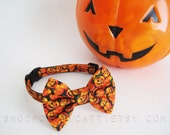 Custom Size - Cat Bow Tie - Classy Jack - Halloween Cat Accessory