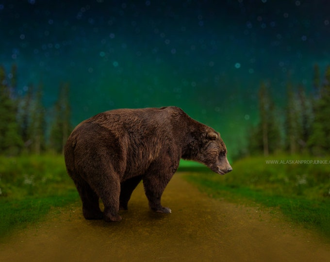 Northern Lights Digital Background with Bear Overlay