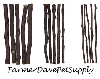15 APPLE CHEW STICK Sampler For Rabbits, Guinea Pigs, Chinchillas, Gerbals, Hamsters,,,,,,
