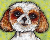 Junebug Puppy ACEO, Original Ink Art Shih Tzu