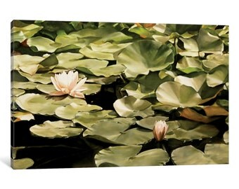 iCanvas Turo Park Water Lillies Gallery Wrapped Canvas Art Print by Thomas Darnell