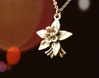 """Colorado Columbine Necklace state flower pure (no lead) pewter 1""""pendant by artist PAULA FREED"""