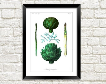 ASPARAGUS & ARTICHOKE PRINT: Vintage Vegetable Illustration Wall Hanging (A4 / A3 Size)