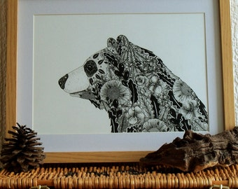 Bear Illustration //  Bear Print // Woodland Animal Drawing // Botanical Art // Bear Drawing // Gift Idea // Nursery Wall Art