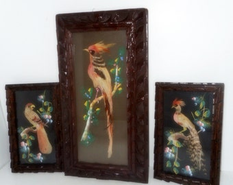 CLEARANCE,Vintage Bird Picture ,Set 3 Feathered Birds, Pictures ,1940s Art Original