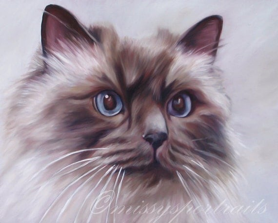 CUSTOM CAT PORTRAIT - Pet Portrait - Custom Painting - Oil Painting - 8x10