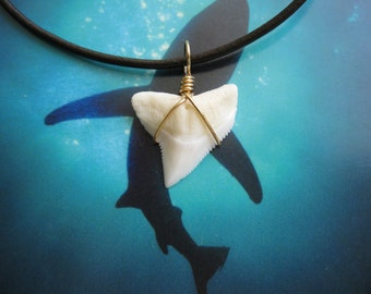 Shark Tooth Necklace, Modern Day Bull Shark tooth, Brass wire wrapped, Leather cord