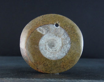 Ammonite pendant , Fossil S6032