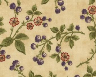 Audra's Iris Garden by Blackbird Designs for Moda - One Yard - 2105 11