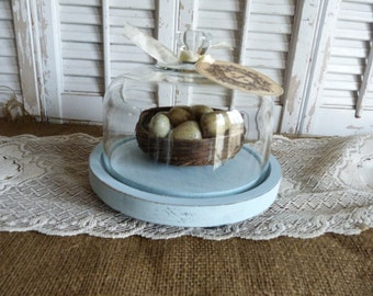 Upcycled Glass Cloche Shabby and Chic Cottage Decor Display French Paris Apartment Distressed Aqua Blue Tray Bowl