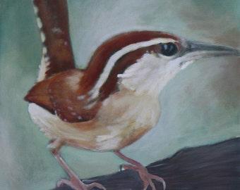 Watchful Wren  20x20 Acrylic on canvas