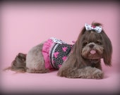 VALENTINE:  Be Mine Heart Dog Harness