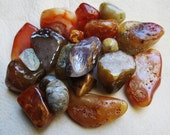 Wild Sea Agates Oregon Ocean Beach Polished Stones Collection Mixed Rock Lot Rock Collection